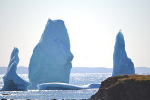 These icebergs in Crow Head glisten in the afternoon sun while the sun sparkles on the water.