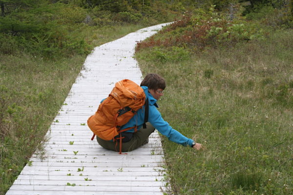 Exploring unexpected little finds along the trail to the Top of Twillingate.