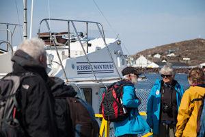 Iceberg Tour