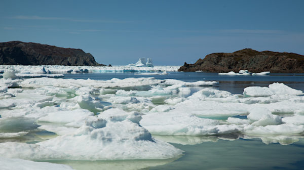 Iceberg Landscape in Twillingate