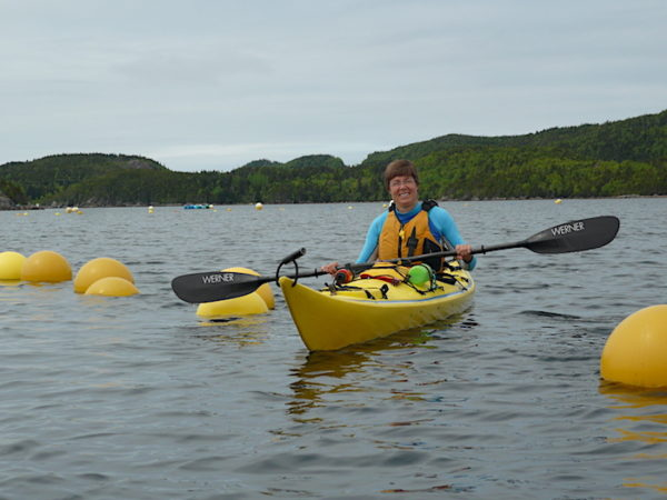 Kayaking in the calmer waters along the Twillingate Coast