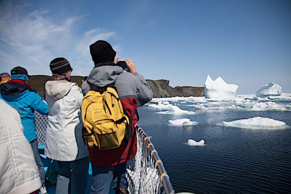 Iceberg Boat Tour