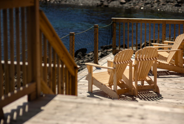 Twillingate Harbour from the deck at Hodge Premises, waiting for your NL Staycation